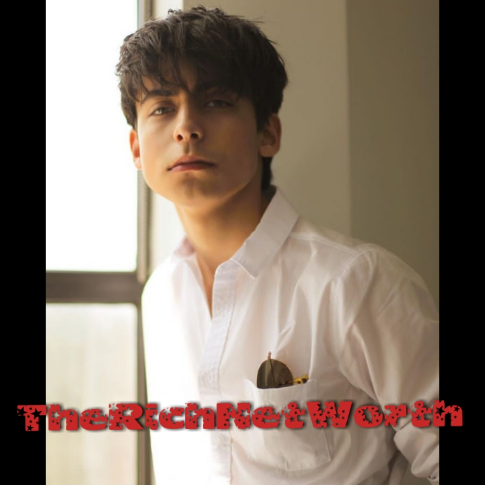 Aidan Gallagher Net Worth In 2020