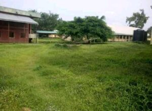Grass Outgrows Benue State University (B.S.U) Due To Lockdown
