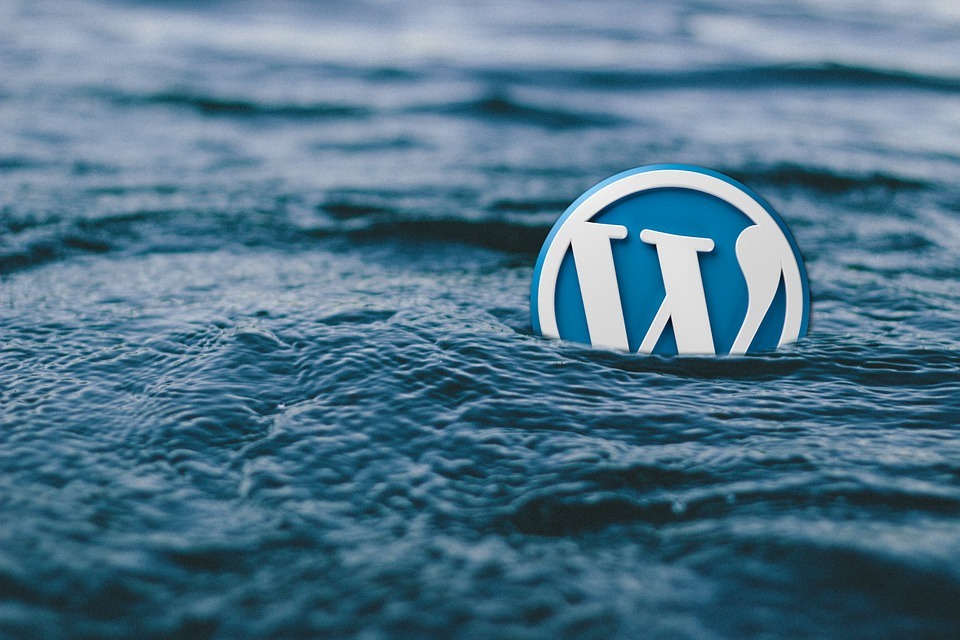 Import And Export WordPress Users